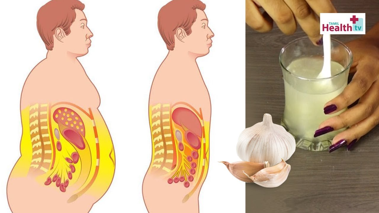 How To Lose Belly Fat Fast By Using Garlic Tamil Weight Loss Home