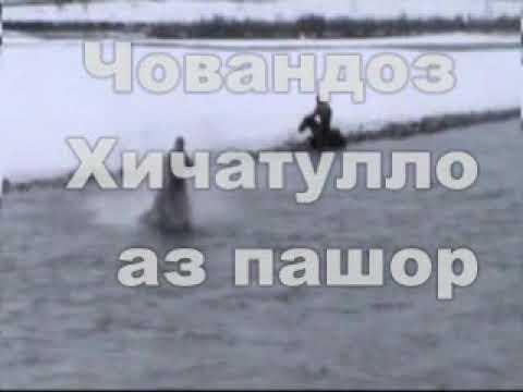 Буз дар ноҳияи Тавилдара КИСМИ 1
