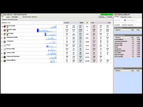 Laying The Field Easy Method To Make Money On Betfair Youtube