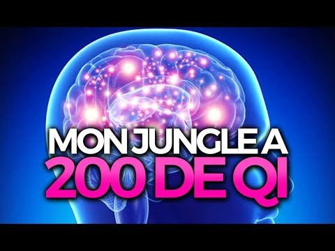 MON JUNGLE A 200 DE QI (ft Tioo) - Caitlyn ADC