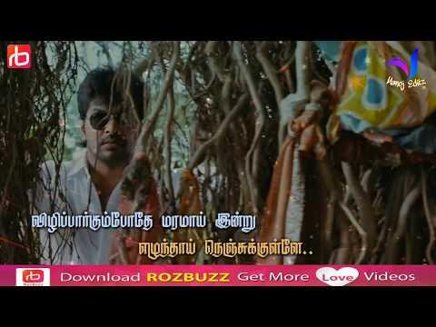 Whatsapp status tamil video | Love song | Chotta