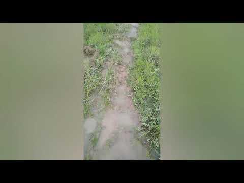 Download Esta es mi ventana para mostrarles el Llano sin filtros 🐴.    sígueme en mi canal de Youtube