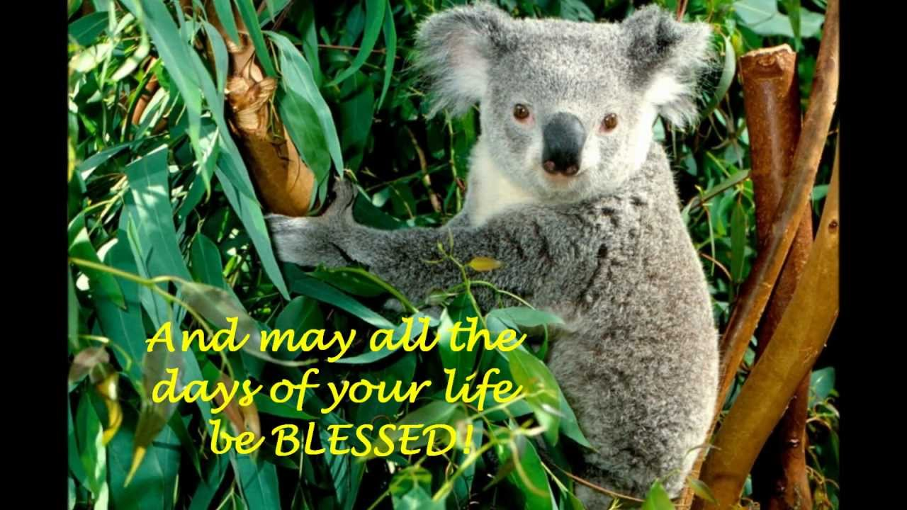 An Australian Birthday Blessing