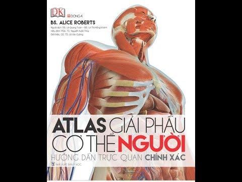 ATLAS GIẢI PHẪU CƠ THỂ NGƯỜI 3D – tinhhoaxanh.vn