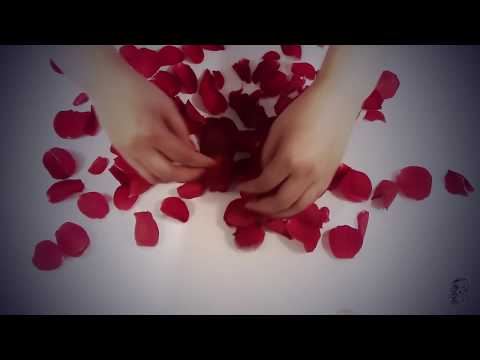 asmr rose kisses rain sounds close up personal attention