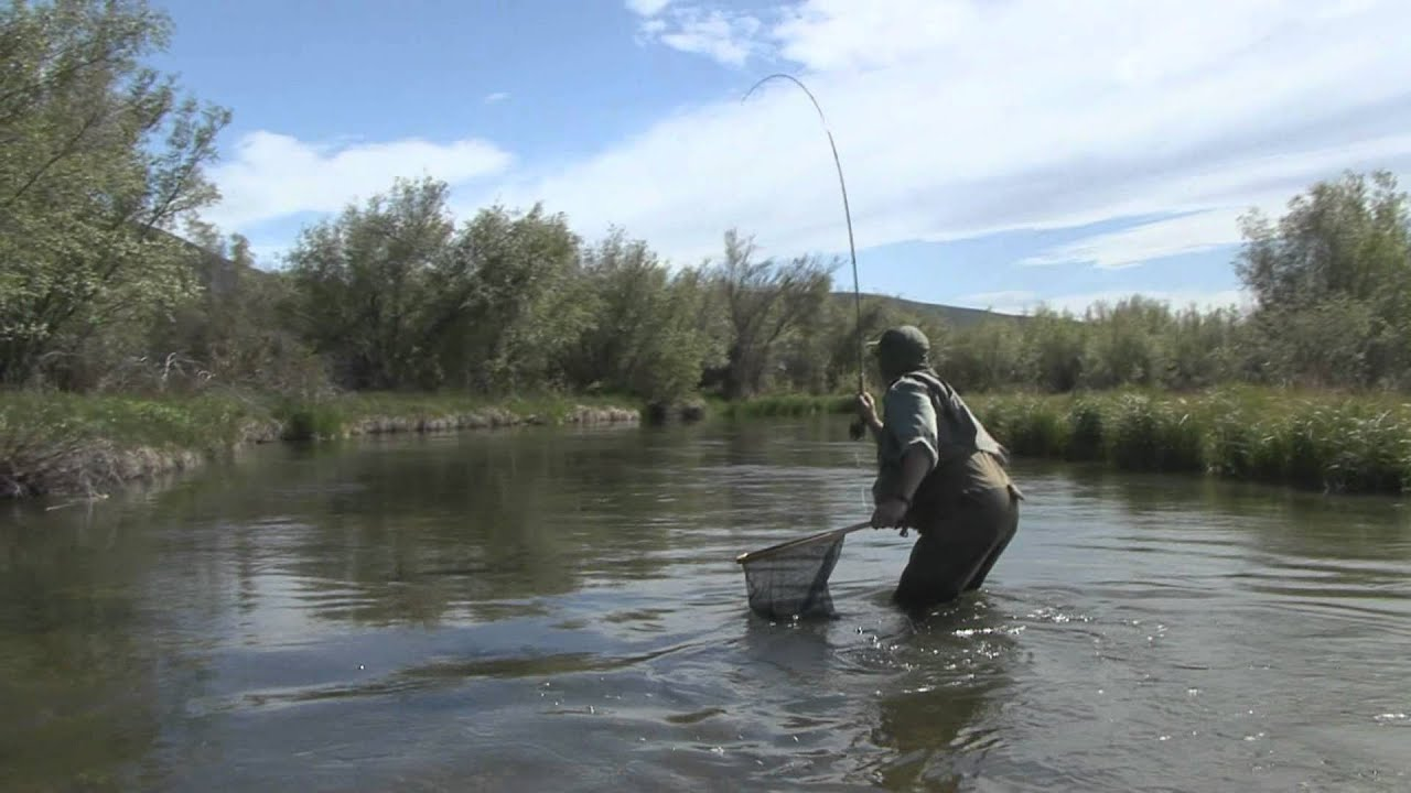 Fishing moment 17 silver youtube for Silver creek fishing report