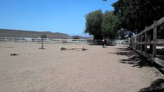 Blazing Away ~ Flatwork