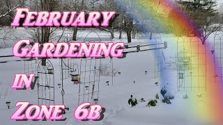 February Gardening in Zone 6b! It's COLD!  Seed Starting & Lettuce, Peppers, Herbs, Blueberries