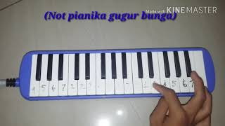 Video NOT pianika lagu (Gugur bunga) download MP3, 3GP, MP4, WEBM, AVI, FLV Juni 2018