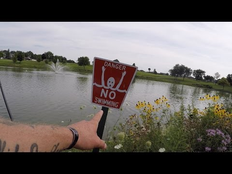 Residential Pond Bass Fishing In Chicago