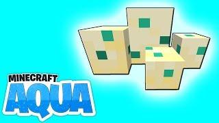 Schildkröteneier farmen & neue Ruinenstrukturen! - Minecraft 1.13 AQUA #37