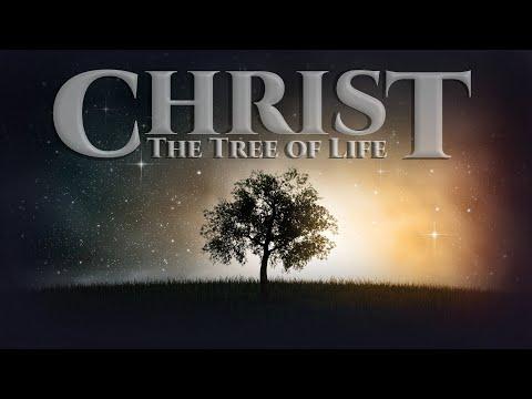 Christ, The Tree Of Life