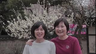 한국민속촌 봄나들이