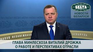 Глава Минлесхоза Виталий Дрожжа о работе и перспективах отрасли