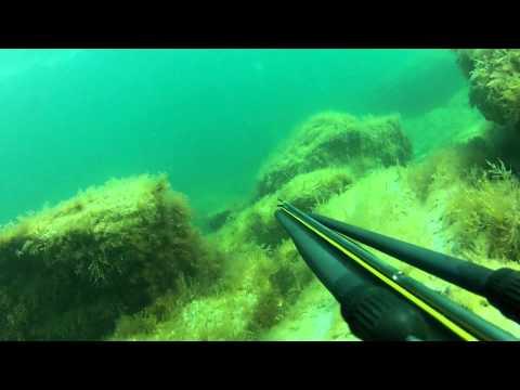 Подводная охота в Каспийском море