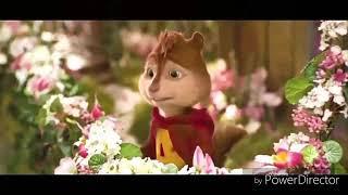 Dekh bhai dekh full masti song Teri fizaon Ki video song(1)