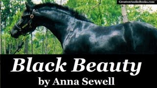 BLACK BEAUTY By Anna Sewell FULL AudioBook Greatest Audio Books