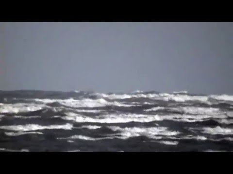 Windsurfing Dollymount Mikey Clancy IR-253