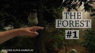 Отдыхаем на Гавайях The Forest #1(Отдых на Гавайях пошел с легка не по плану... The Forest, это наикрутейшая игра, советую ее всем. Это небольшая..., 2014-06-04T03:00:01.000Z)
