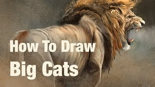 Drawing Lessons - How To Draw Big Cats promotion