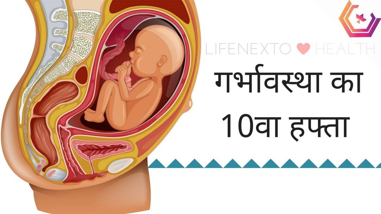 Pregnancy Week by Week in Hindi - 10वा हफ़्ता गर्भवस्था का हिंदी मैं
