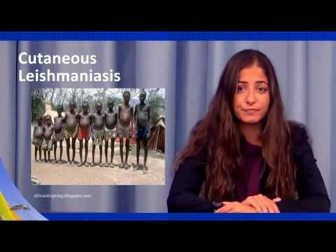Clinical Manifestation of the Disease and Diagnosis - Leishmaniasis