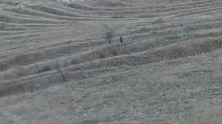 Спускаем колесо с горы 2