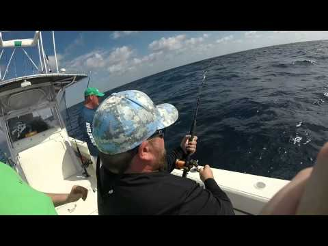 West palm beach fishing with reel intense youtube for West palm beach fishing
