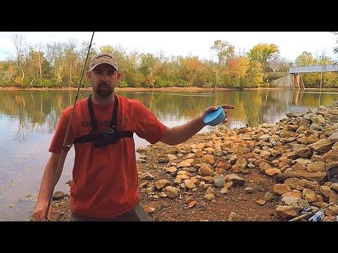 Redear Sunfish On Nightcrawlers (River Bank Fishing)