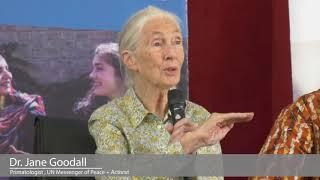 "A snippet of Sierra Leone's Tourism film ""Jane Goodall DBE  in Sierra Leone."""