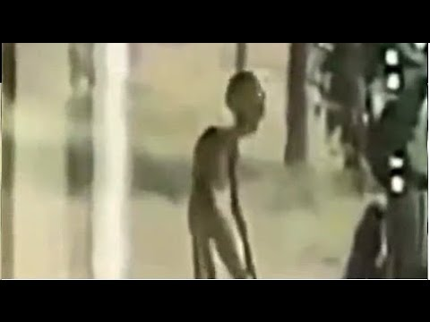 TOP TEN REAL ALIENS CAUGHT ON TAPE 2017