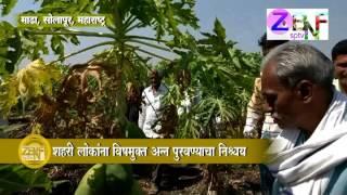 ZBNFSPTV :  Solapur : Maharudra Latke Has a 3 Years Experience of Zero Budget Natural Farming