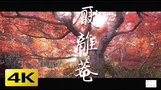 [4K] 厭離菴 京都の紅葉 京都の庭園 Enri-an Temple and Autumn Leaves [4K] The Garden of Kyoto Japan