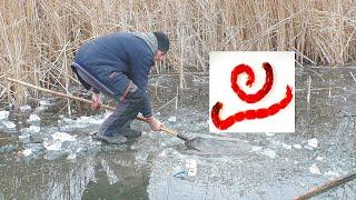 Зимняя рыбалка Как добывают мотыль и ловля на балду и мормышку My fishing