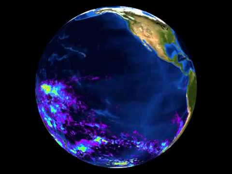 Coral Science From Outer Space To Inner Space