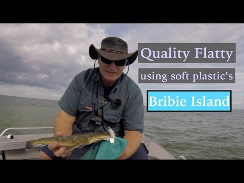 How To Catch FLATHEAD, Fishing Tips And Gear, BRIBIE ISLAND Flats.