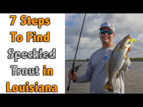 Seven Easy Steps To Always Find Speckled Trout In Louisiana