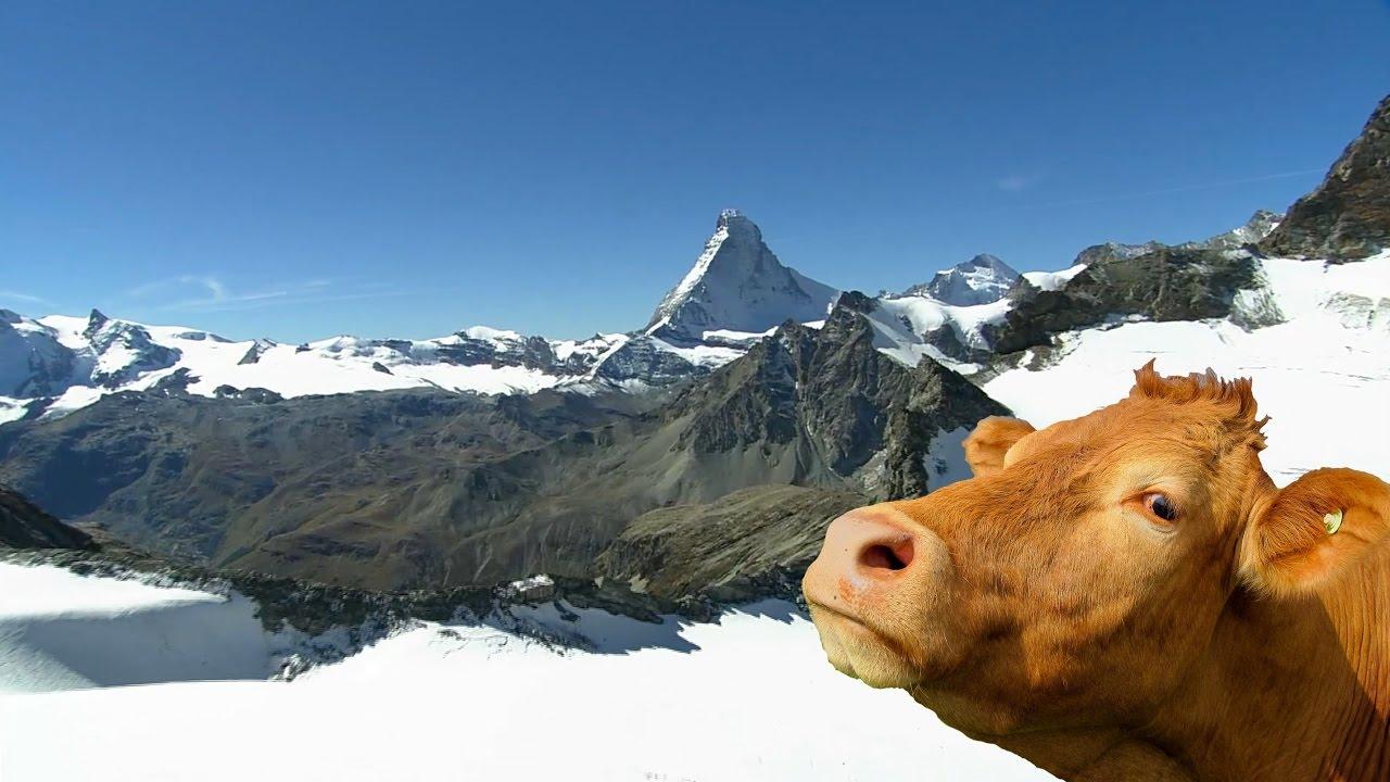 Switzerland Mountains | HD - YouTube