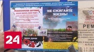В Забайкалье запретили жарить шашлыки и посещать леса - Россия 24