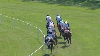 Vidéo de la course PMU PRIX DES ESPOIRS