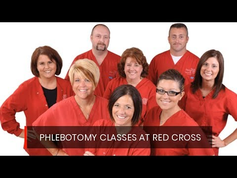 Red Cross Phlebotomy Classes