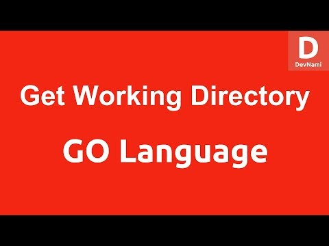 GO Programming Current Working Directory