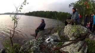 видео белое море фото
