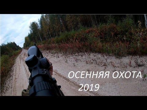 ОХОТА НА МЕДВЕДЯ 2019 / на приваде ТРИ МЕДВЕДЯ/3 ДНЯ В ТАЙГЕ