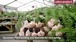 10 tips for gardeners in October from the Eden Project