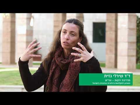 הארגון לחקלאות ביולוגית אורגנית בישראל
