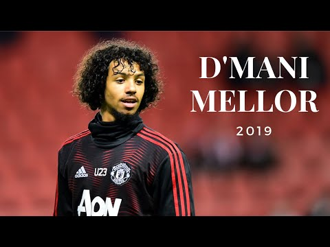 D'Mani Mellor (Manchester United) - Highlights 2019