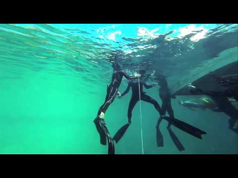 Freediving at Deans Blue Hole