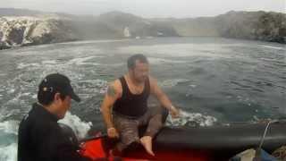 Navegando con Delfines y Buceo Isla Santa Maria ANTOFAGASTA CHILE