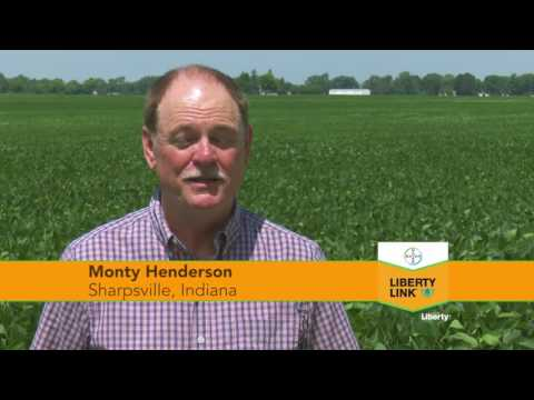 6/25/2016 U.S. Farm Report